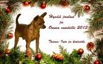 into_joulukortti