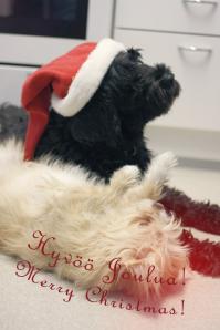 Lakun joulutervehdys 2012