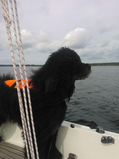 H-veneessä.
